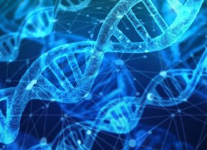 DNA testing for pets – What secrets does your pet hold?