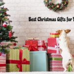 Is Christmas nearby? Create A Holiday Gift Guide For Pet