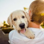 What Should I Feed My Dog During Pregnancy?